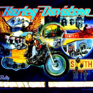 Harley Davidson Pinball Machine - Bally